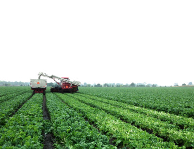 Our Farms
