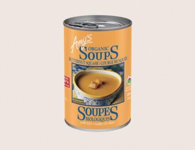 Organic Butternut Squash Soup/Courge Musquée Biologique hover image