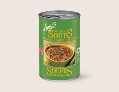 Organic Lentil Vegetable Soup/Lentilles Et Légumes Biologiques hover image