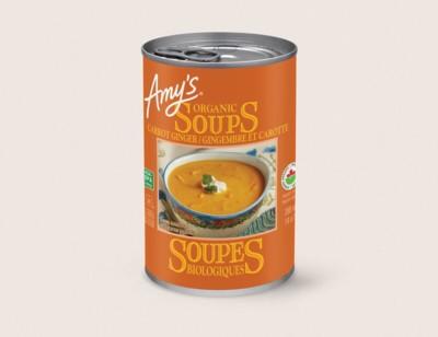 Organic Carrot Ginger Soup/Gingembre Et Carotte Biologique hover image