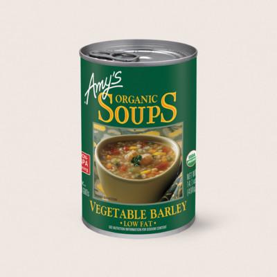 Sensational Amys Kitchen Amys Organic Vegetable Barley Soup Interior Design Ideas Gentotryabchikinfo