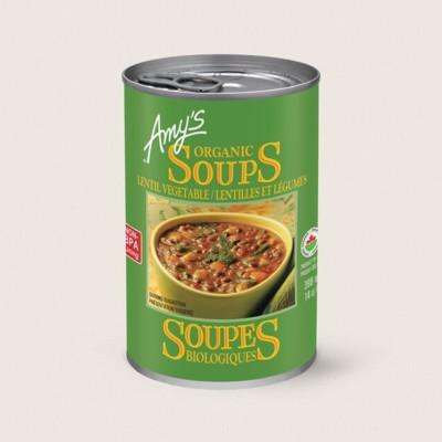 Organic Lentil Vegetable Soup/Lentilles Et Légumes Biologiques
